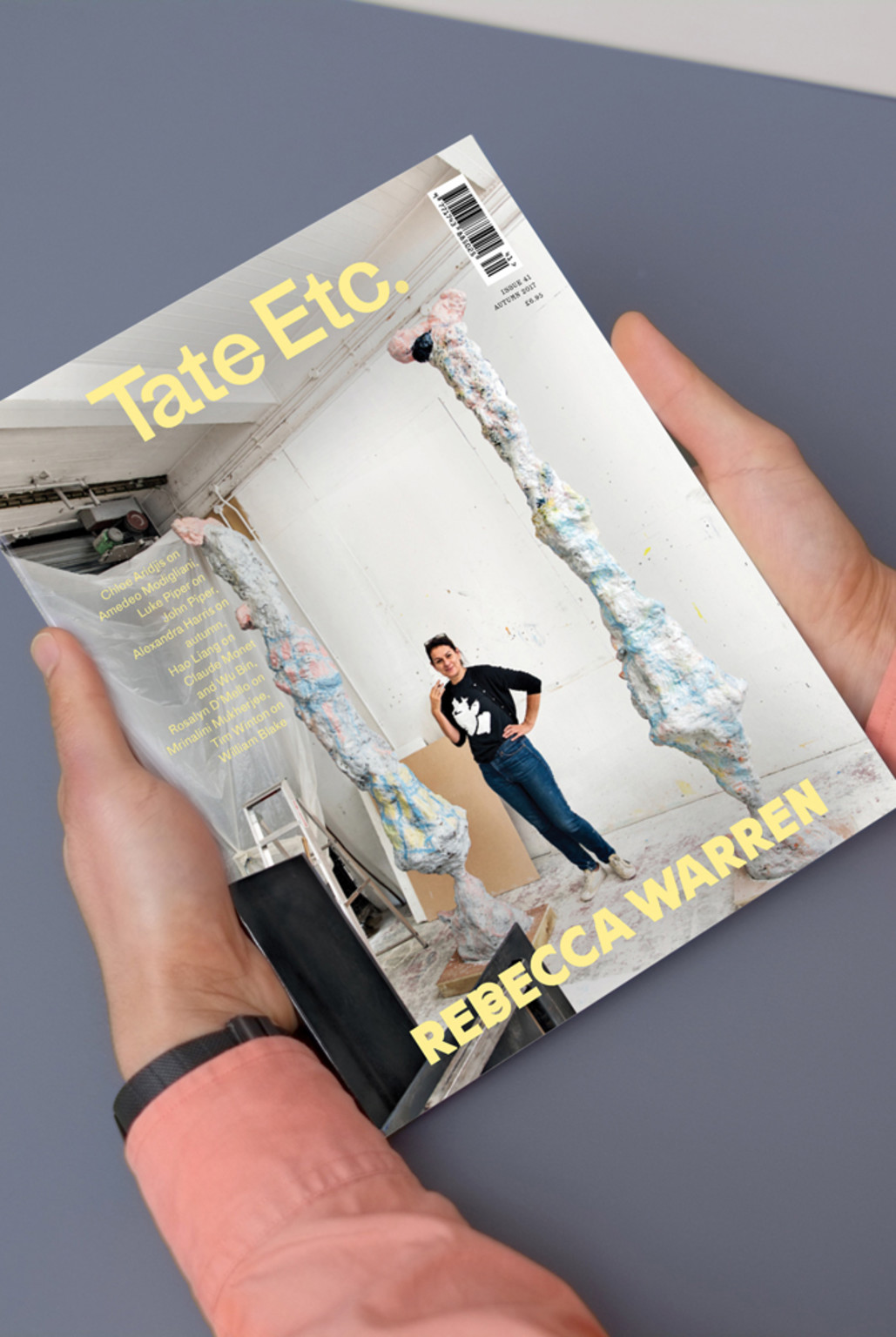 Cover of Tate Etc., Issue 41 - © © Ard, Swiss Design Awards Blog